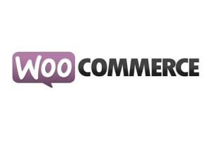 site ecommerce woocommerce